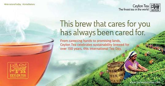 SLTB celebrates International Tea Day today